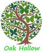 OAK HOLLOW COMMUNITIES